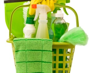 green , plastic cleaning basket